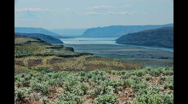 Columbia Bluffs in Quincy, Washington. MLS 849887.  171.8 acre Columbia River Upland View Parcel. Offered at $3.7 million. Grant County. Video: Stills of exceptional property: