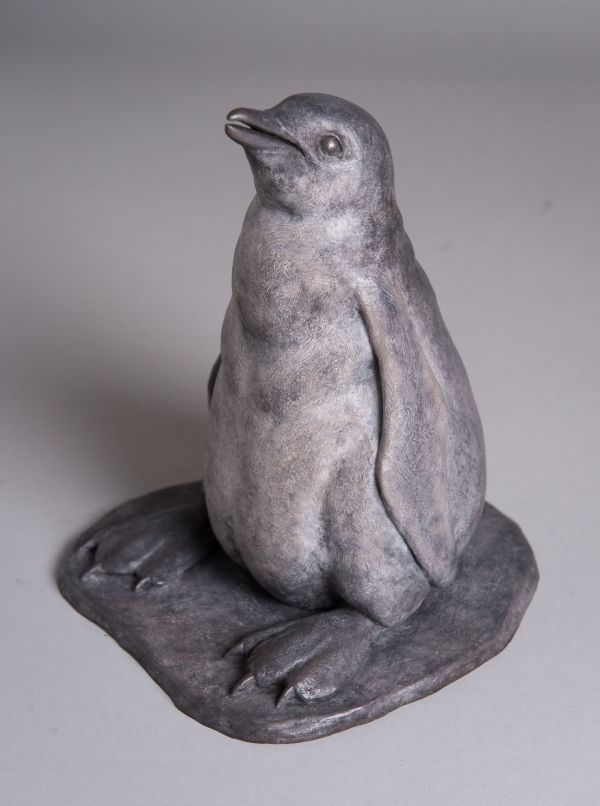 Bronze Birds Sculptures or statue by artist Anthony Smith titled: 'Gentoo Penguin Chick (life size Rare sculpture statue statuette)'