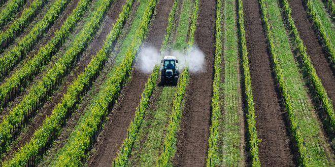 Ridurre l'uso dei pesticidi senza perdere produttività e redditività: secondo uno studio dell'Istituto francese per la ricerca in agricoltura è possibile