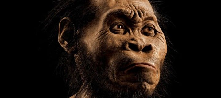 Homo Naledi: Nova espécie de humano é descoberta na África