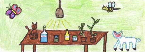 disegno di un laboratorio di scienze, con piante, animali, e contenitori vari