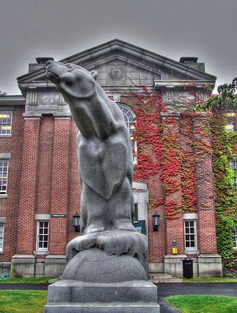 College essay ideas help bowdoin college
