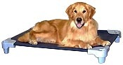 Lilly needs this for hot daysDogs Beds, Petcot Company, Perfect Dogs, Manufactured Dogs, Breeds Dogs, Doggie Stuff, Petcot Shops, Elevator Dogs, Animal