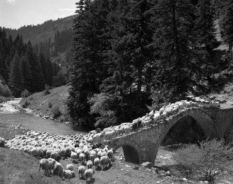 Ήπειρος γεφύρι Νέγρι. Φωτογραφία: Τάκης Τλούπας. http://takis.tloupas.gr