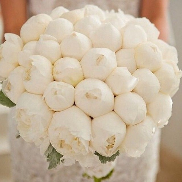 My favorite flowers…a Bouquet made of Peonies #love #fashionweek #flowers #peonies #bouquet #bride #blonde #beautiful #brunette #barbie #wedding #weddinginspo #igwedding #ighair #igbride #summer...