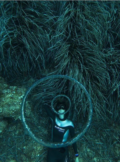 """""""Queen of the Bubbles"""" laying on the seabed off the coast of Tavolara in Sardinia."""
