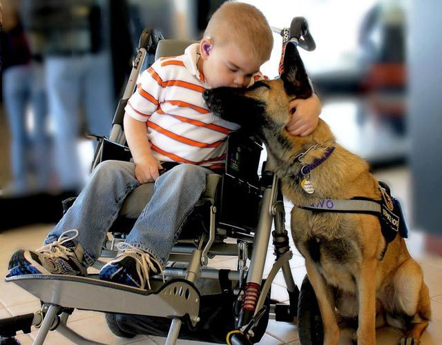 Lucas and Juno: The Special Relationship Between a Sick 4-Year-Old Boy and His Dog...Click photo to read their love story.