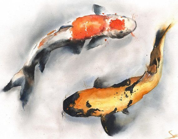 Goldfish Watercolor With Images Watercolor Fish Goldfish Art