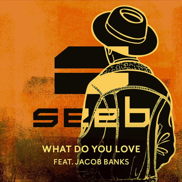 """""""What Do You Love"""" by Seeb Jacob Banks #Music #MusicHits"""