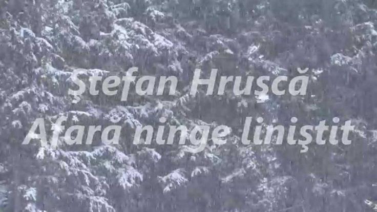 Ştefan Hruşcă - Afară ninge liniştit (cu versuri de George Coşbuc)