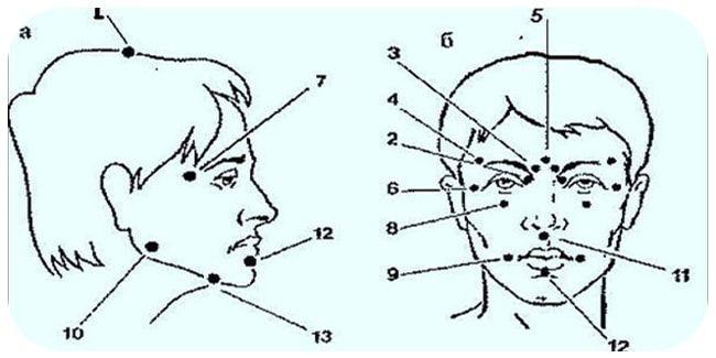 Древние японские врачеватели установили, что, воздействуя на определенные точки на голове (всего их тринадцать) пальцами, можно избавиться практически от любых не�…