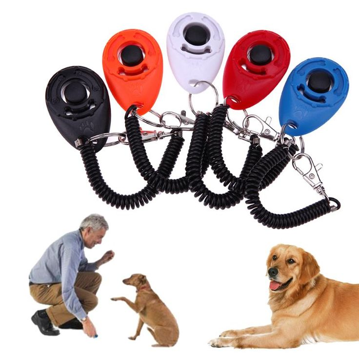 5pcs Adjustable Sound Key Chain Pet Trainer Dog Training Clicker Pet Trainer Tool Wrist Strap Dog Train Click (Fixed 5 Colors) //Price: $9.95 & FREE Shipping //     #VAPE