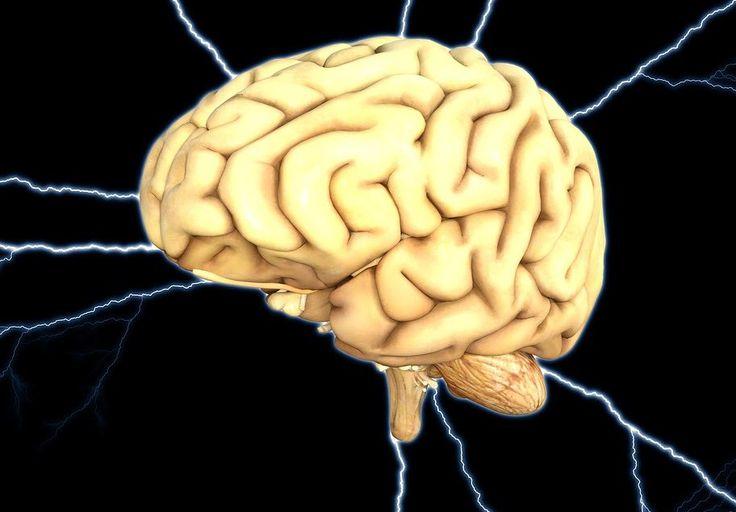 Hoax Atau Fakta: Radiasi Sinyal HP Sebabkan Otak Mengecil?