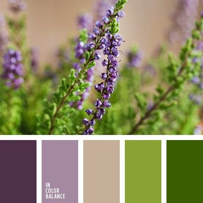 """""""пыльный"""" коричневый, коричневый, кремовый, лиловый цвет, оттенки лилового, палитра для ремонта, палитра цветов для дома, подбор цвета для квартиры, розовый, салатовый, тёмно-зелёный, фиолетовый, цвет зелени, цвет зеленых листьев."""
