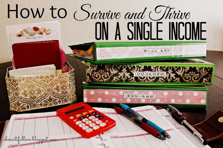 A Bountiful Love: How to Thrive and Survive on a Single Income.