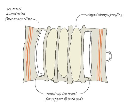 shaped sourdough bread - illustrated by Johanna KIndvall