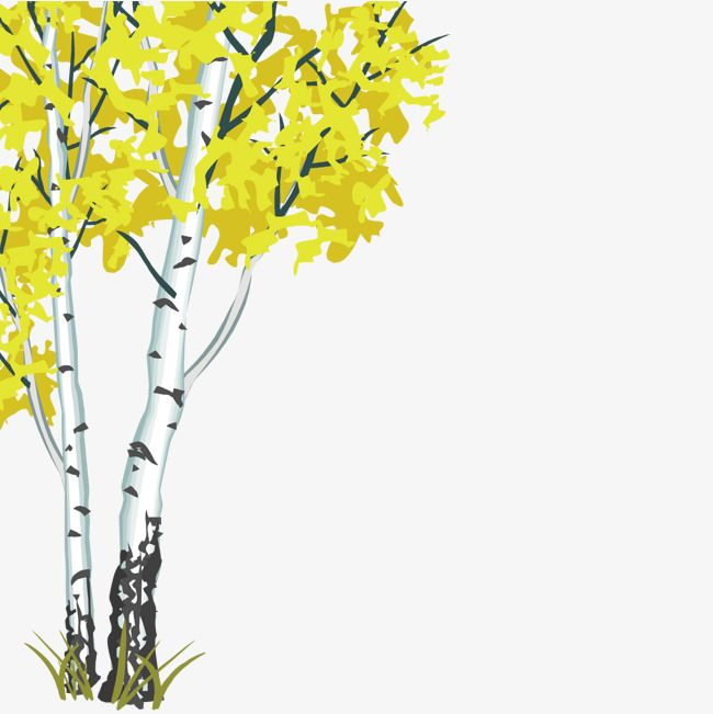 Lush White Birch Lush White Birch Trees Png Transparent Clipart Image And Psd File For Free Download White Birch Trees Lush Clipart Images