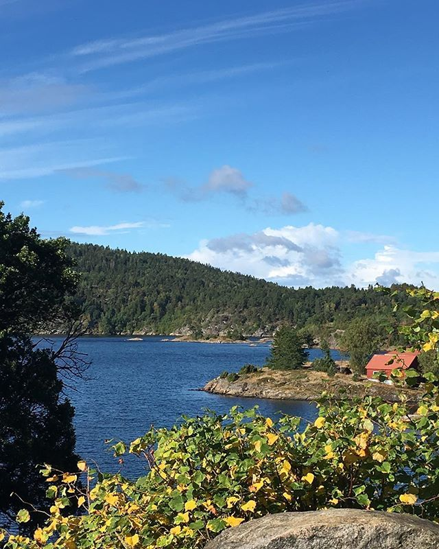 Der kom endelig sola på besøk ☀️#sommerferie #vestfold #helgeroa #visitnorway #summer #boat #boating #ilovenorway #instanorway #norgefoto #norgebilder #eastnorway2day #norway2day #utno #utnorge #visitvestfold #fiske #fishing #fisketur #båtliv #båt #sommer #sol #sun
