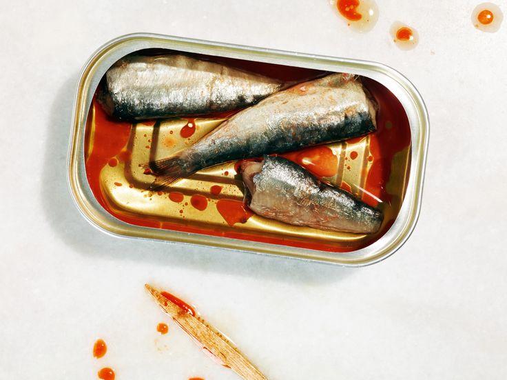 Rob Fiocca #sardines Fuze Reps | Toronto Ontario Canada | TEL 416.656.8585