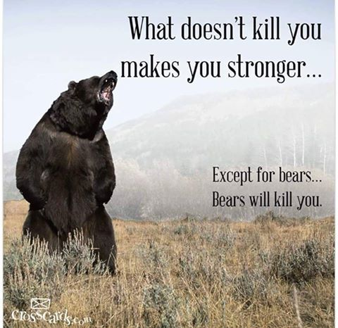 What doesn't kill you makes you stronger.. Except Bears ...
