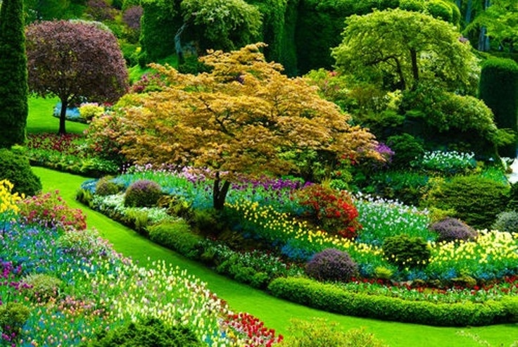 Beautiful flower garden in the holland photos of for Beautiful flower landscapes
