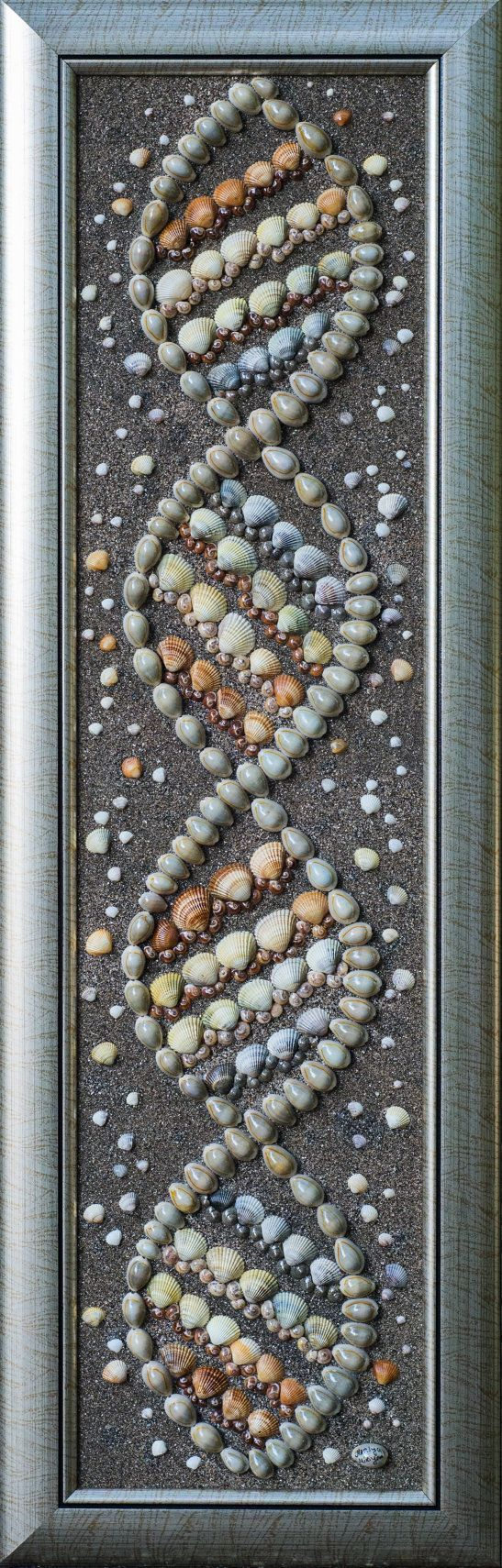 DIY your photo charms, 100% compatible with Pandora bracelets. Make your gifts special. Make your life special! Sea Shells Sea snail Mixed media Art Mosaic Wall by PebbleShellArt