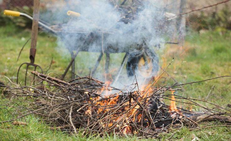 Jeder Gartenbesitzer kennt das Problem: Wohin mit dem Gehölzschnitt und den Gartenabfällen? Darf man sie auf dem eigenen Grundstück verbrennen? So ist die Rechtslage.