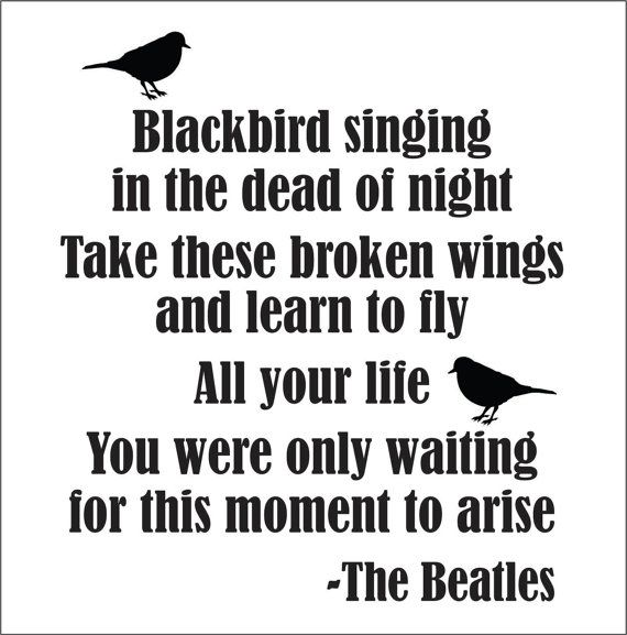 BlackBird Beatles Song Lyrics wall decal NEW by FairyDustDecals, $30.00 @Bethany Shoda Shoda Shoda Clough