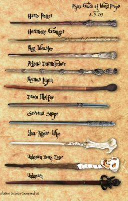 The Wands of the Harry Potter Characters