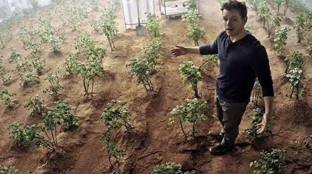 Επιστήμονες στο Περού  καλλιέργησαν πατάτες σε συνθήκες παρόμοιες με του πλανήτη Άρη