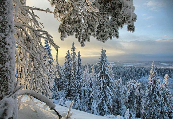 Finland in Winter | Valtteri Mulkahainen