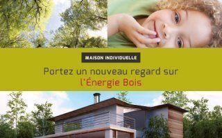Poujoulat : les systemes bois energie en maison individuelle