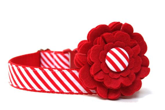 Candy Cane Dog Collar Flower Add-On by Wagologie