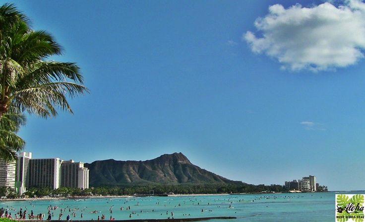 10月最後の金曜日、今日はプレミアムフライデー。 金曜からハワイ旅行に出かけよう!  15時退社でプレミアムフライデーを活用すれば、諦めていた19時成田発の便も乗れちゃう。 約7時間後に楽園ハワイに向けて、いざ出国!  早朝にハワイへ到着すれば、1日目も有意義に過ごせ、ハワイに着いた時からちょっと得した気分を味わえる。 そんなフライトの選択もいいのではないでしょうか? http://b-alohastay.com/pmh/blog171027/  ◆【ホテル&エアープラン】 ホテルと航空券を一緒に予約すると航空券が最大10%もお得! ホテルゲスト専用の特別料金(航空券)をご案内。 7社の航空会社よりお得な便を自由に選べる! http://b-alohastay.com/pmh/stayplan/airspecial/  #ハワイ #ワイキキ #コンドミニアム #アクアパシフィックモナーク #プレミアムフライデー
