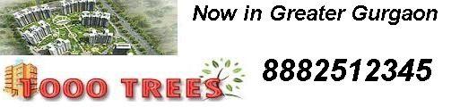 Find  Geoworks 1000 Trees New Residential Projects, Geoworks 1000 Trees Builders New Residential Properties in Gurgaon, New Launches of Geoworks 1000 Trees in Gurgaon and Geoworks 1000 Trees Builders Upcoming Residential Projects   Call +91-8882512345 for Geoworks 1000 Trees Projects