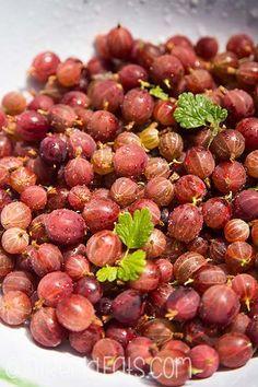 gooseberry chutney recipe ingredients