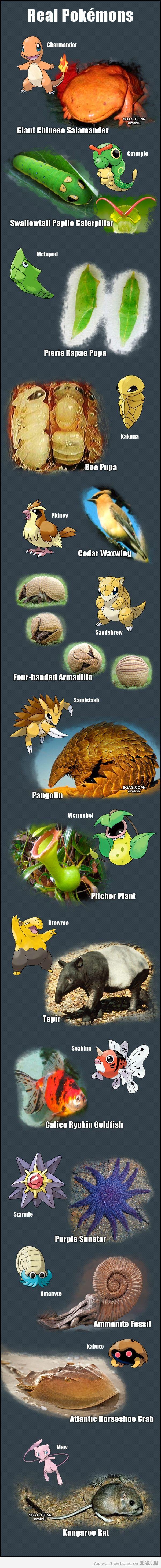 Pokemons baseados em fatos reais