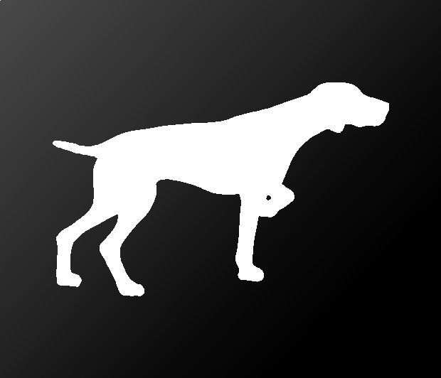 Color Choice HIGH QUALITY Spinone Italiano Vinyl Decal Sticker