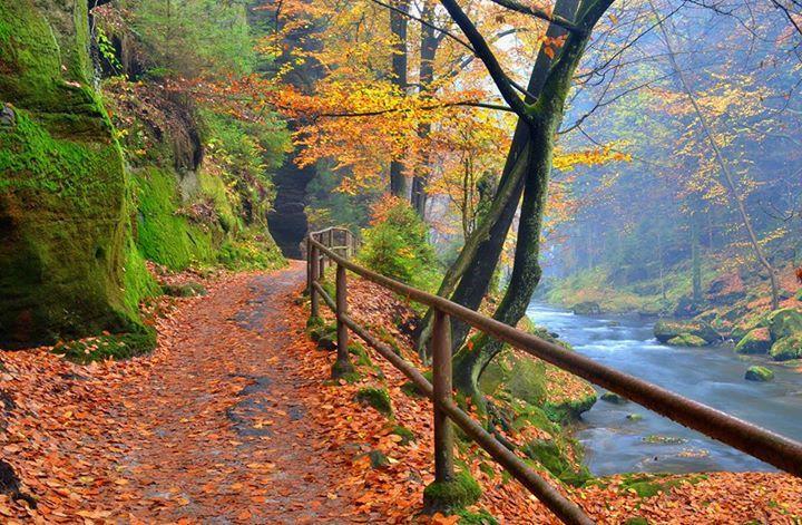Edmund's Gorge, Czech Republic
