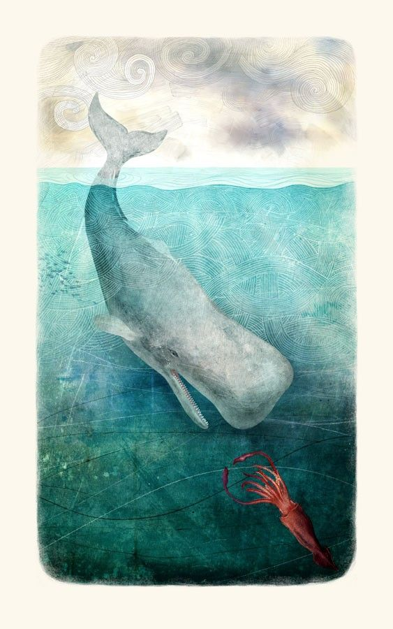 A whale chasing the illusive Squid into the depths of the Sea. Beautiful illustration!