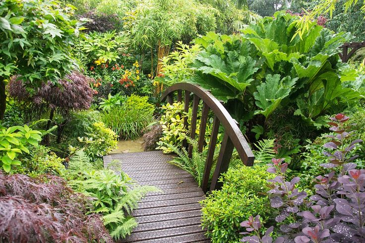 1000 best Сад images on Pinterest   Landscaping, Garden ideas and ...