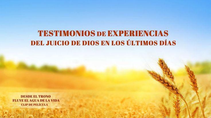 (IX) - Testimonios de experiencias del juicio de Dios en los últimos días
