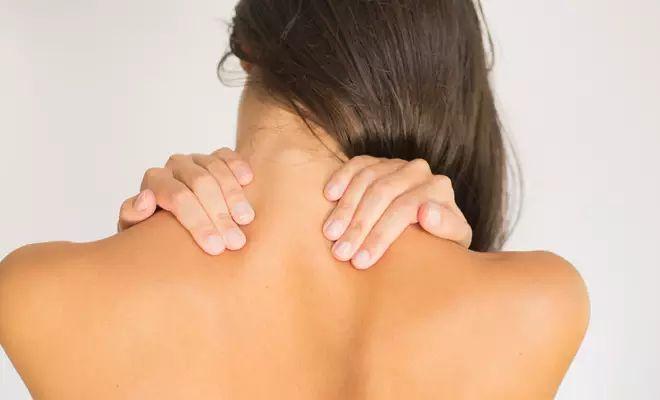 Schmerzen im oberen Rücken betreffen meist die Halswirbel im Nacken oder den Bereich der oberen Brustwirbel. rtv nennt Ursachen und verrät Tipps.
