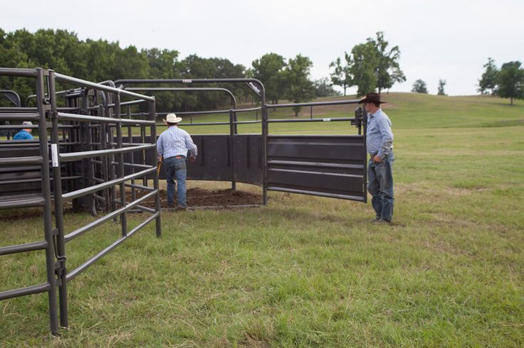 This 8' gate allows loading of cattle directly from the sweep without forcing them down the alley and features a double piston slam-lock lever latch.
