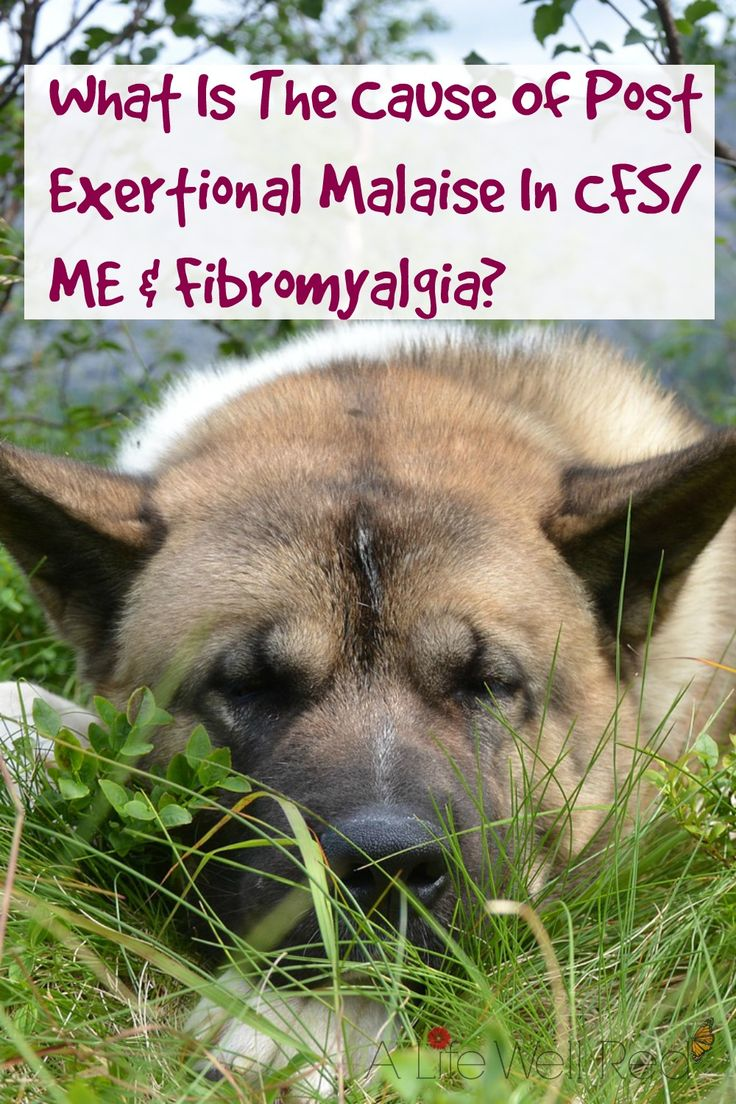What Is The Cause Of Post Exertional Malaise in cfs/me and fibromyalgia