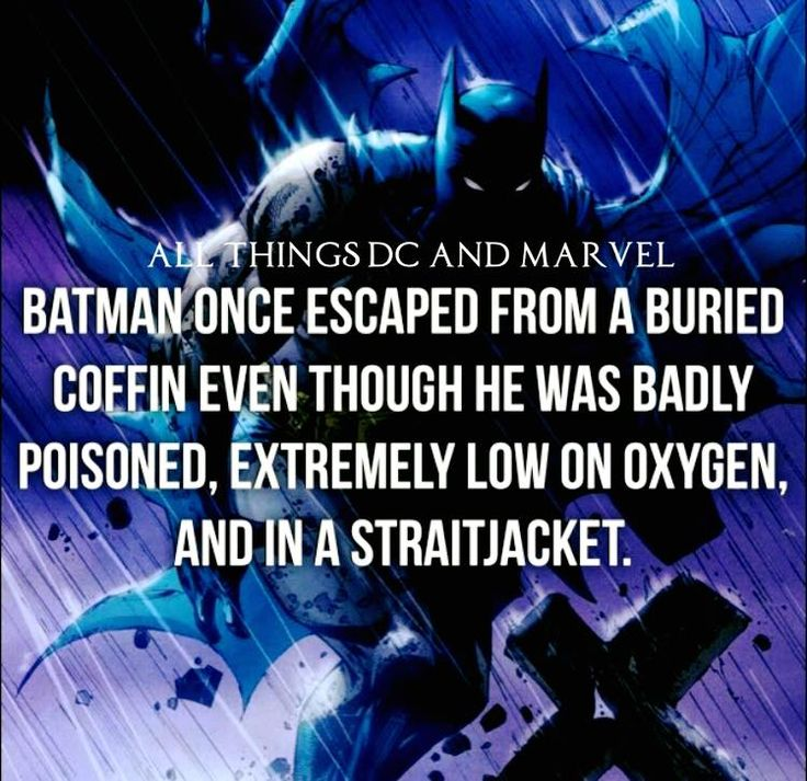 Most Interesting Man In The World Quotes: 25+ Best Batman Quotes On Pinterest