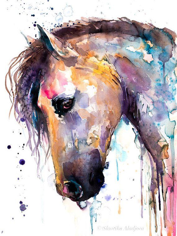 Beautiful Horse Watercolor Painting Print By Slaveika Aladjova