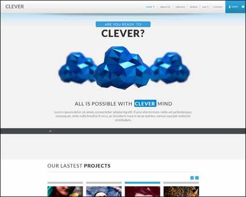 100+ Best Responsive Adobe Muse Themes - VNROnline