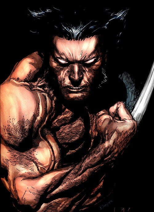 Wolverine by Leinil Francis Yu, colours by Roderic-Rodriguez