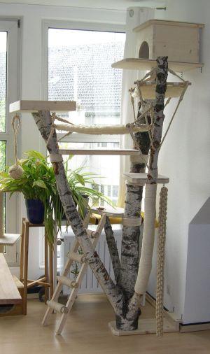 die besten 25 kratzbaum natur ideen auf pinterest. Black Bedroom Furniture Sets. Home Design Ideas